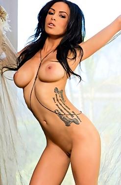 Playboy Babes