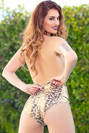 Shining Leopard Melissa Jean