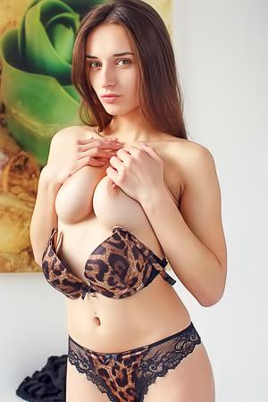 Gloria Sol strips off leopard lingerie