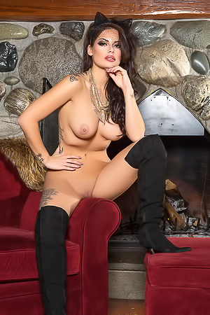 Shelly Lee - hot and sexy cat